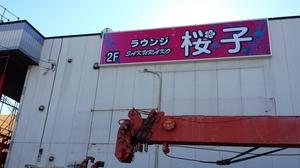 桜子7.jpg